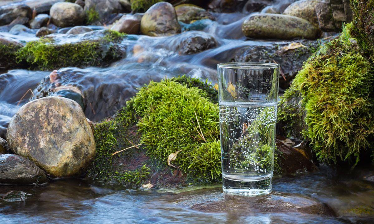 Glas mit Sprudelwasser steht in einem seichten Bach