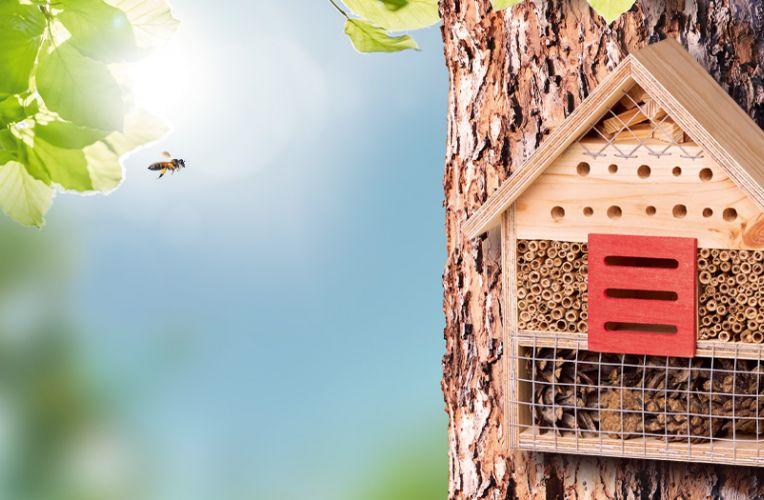 Insektenhotel am Baum mit Biene