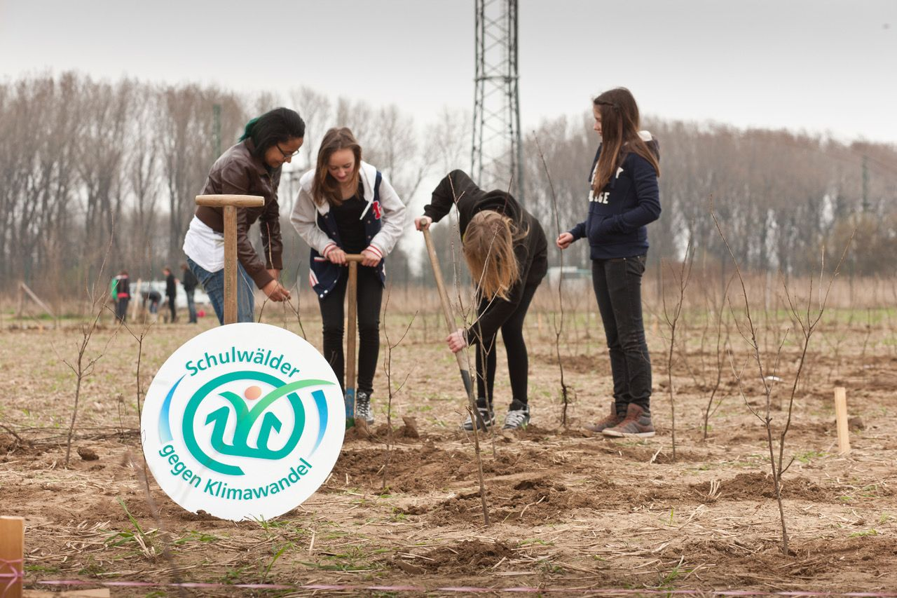 Vier Mädchen pflanzen Baumsetzlinge auf einem Acker bei der Aktion Schulwälder gegen Klimawandel