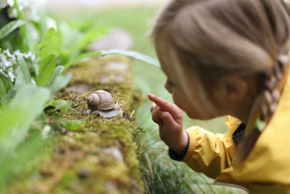kleines Mädchen betrachtet eine Schnecke