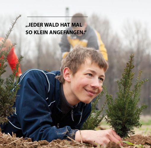 Kind im Schulwald