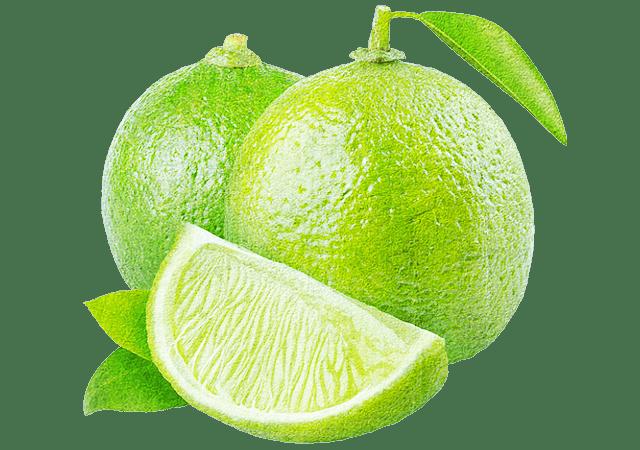 vilsa-frucht